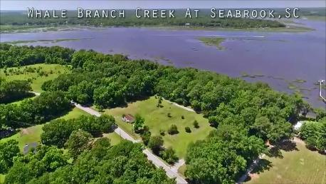18 Briarfield, Seabrook, SC 29940 (#17010327) :: The Cassina Group
