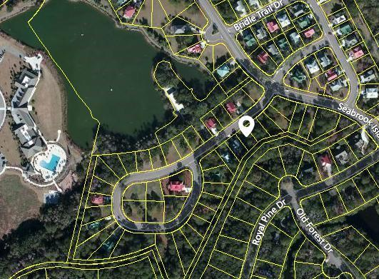 3021 Seabrook Village Drive, Seabrook Island, SC 29455 (#17024910) :: The Cassina Group