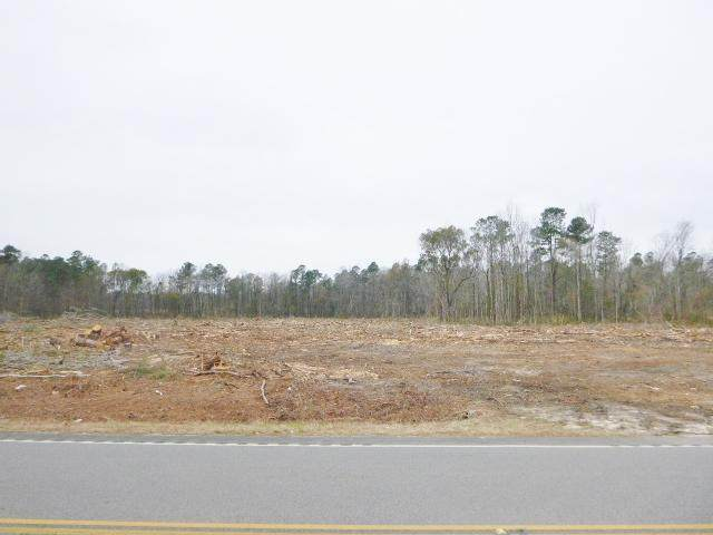 Tract 3-B Old Gilliard Road, Ridgeville, SC 29472 (#20033815) :: The Cassina Group