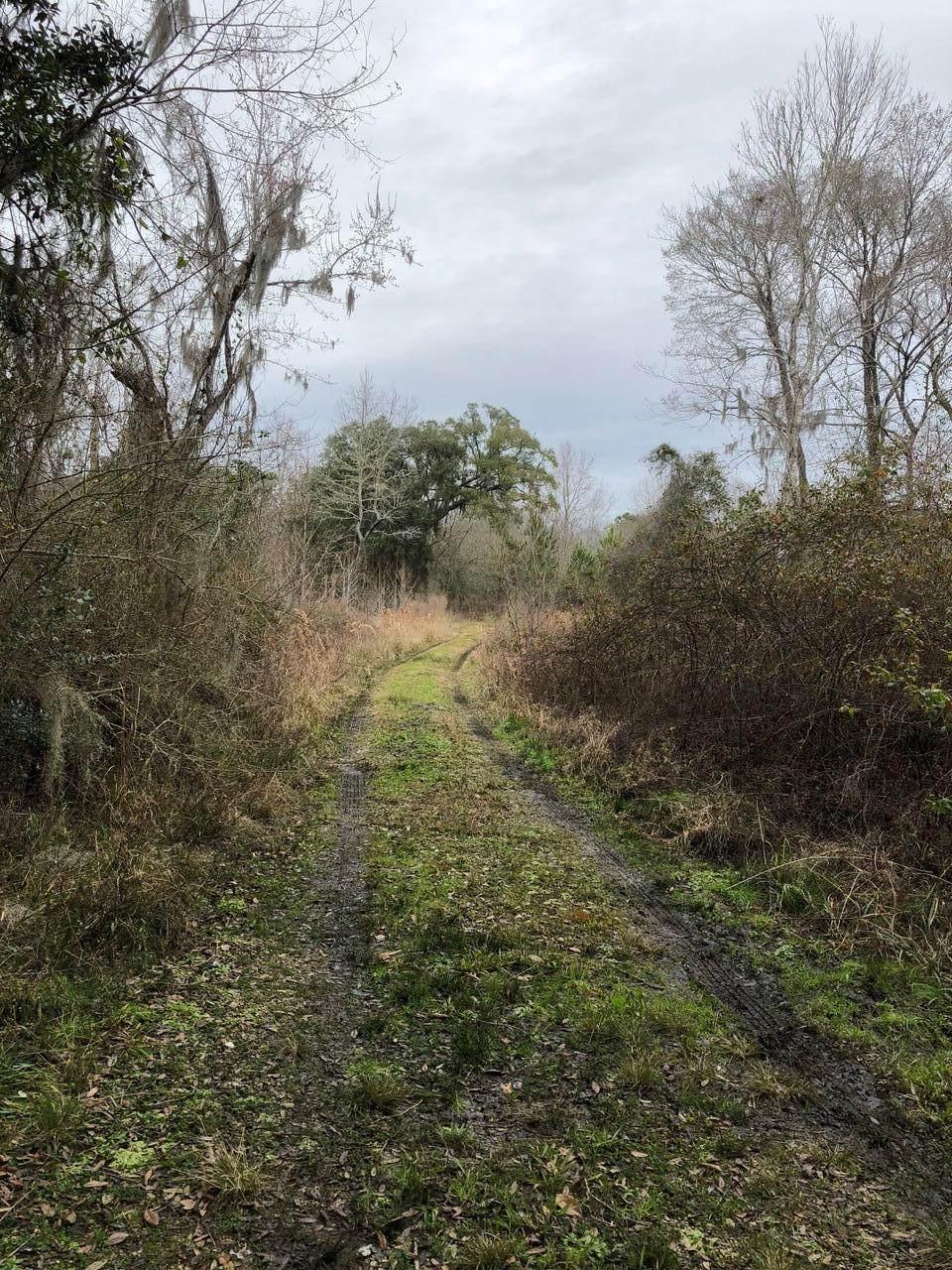 2999 Hut Road - Photo 1