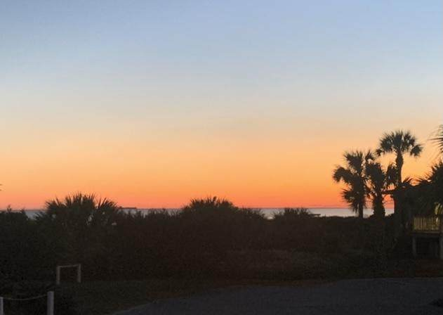 1300 Ocean Boulevard #105, Isle Of Palms, SC 29451 (#21005220) :: Realty ONE Group Coastal