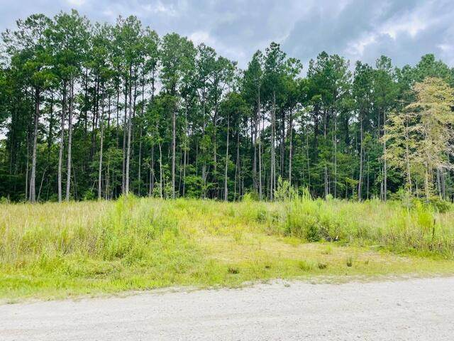 1095 Bridle Gate Trail, Awendaw, SC 29429 (#21024129) :: The Cassina Group