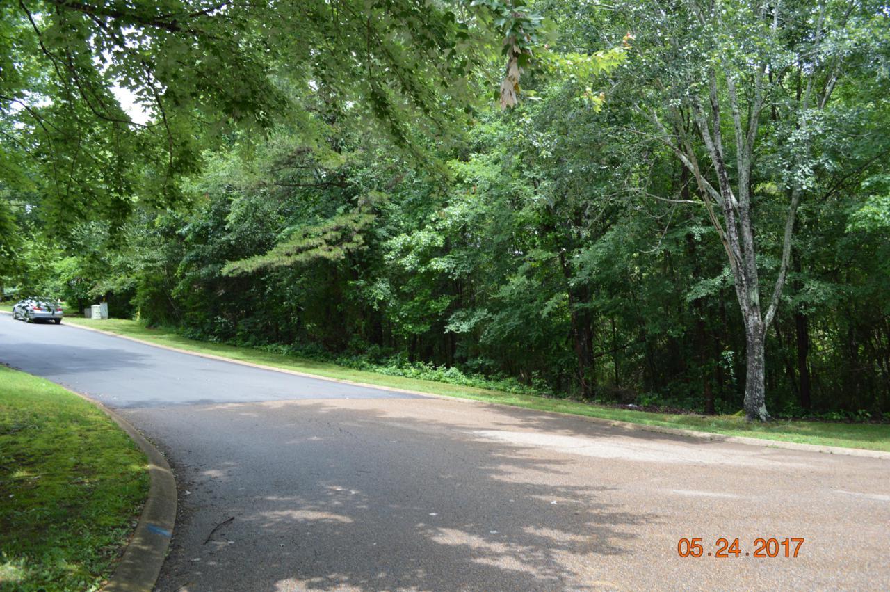 5725 Laurel Ridge Rd - Photo 1
