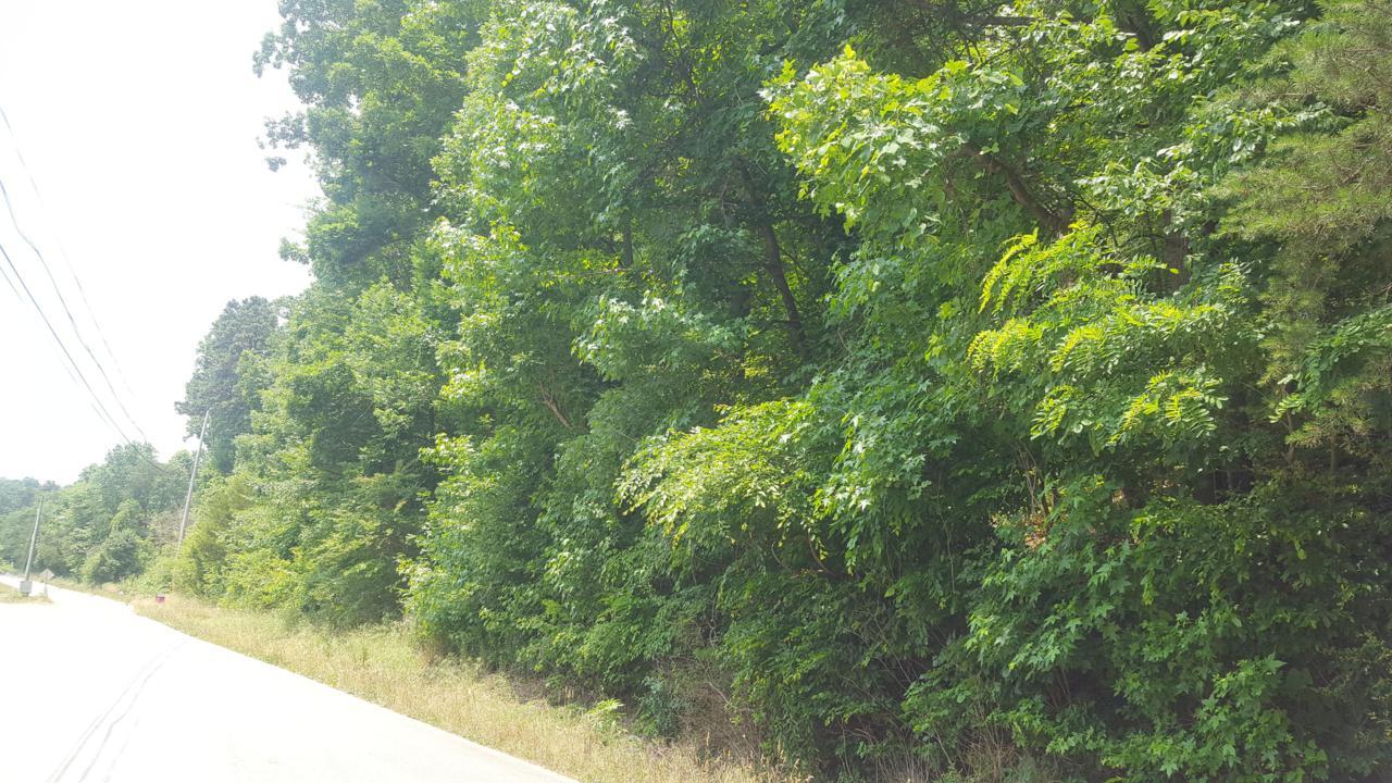 0 Mountain Creek Rd - Photo 1