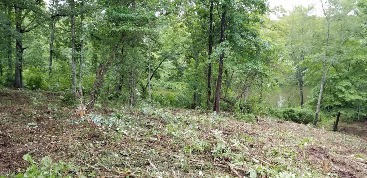 Lot 15 Emory Cove Dr - Photo 1