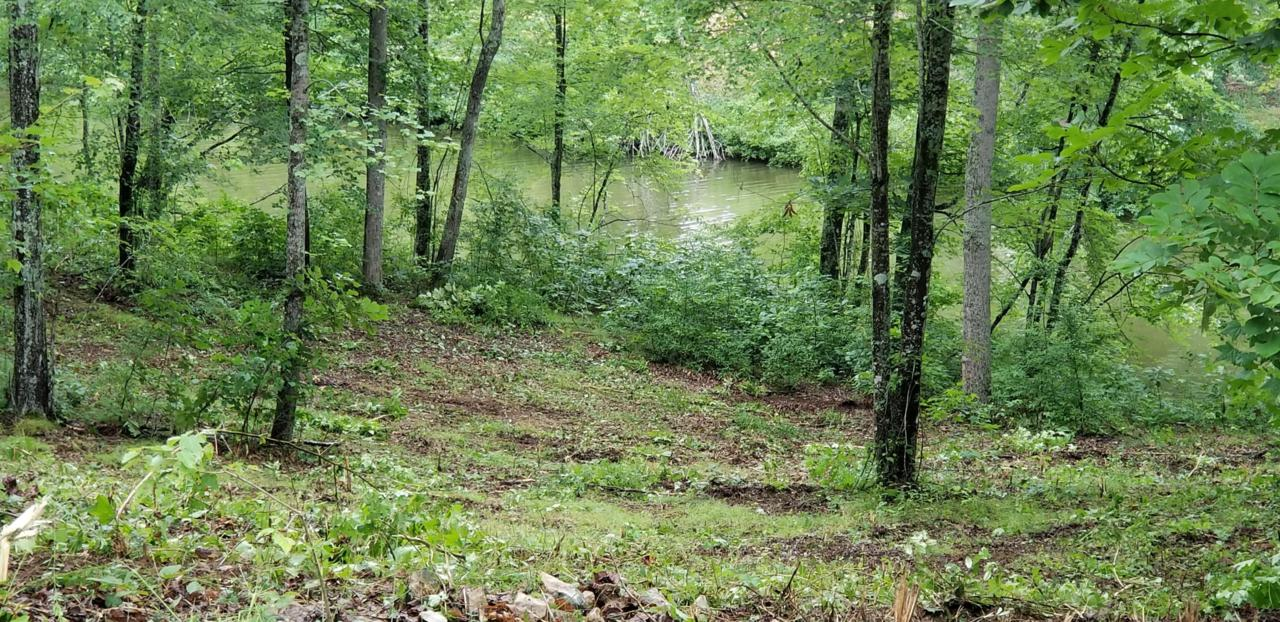 Lot 34 Emory Cove Dr - Photo 1