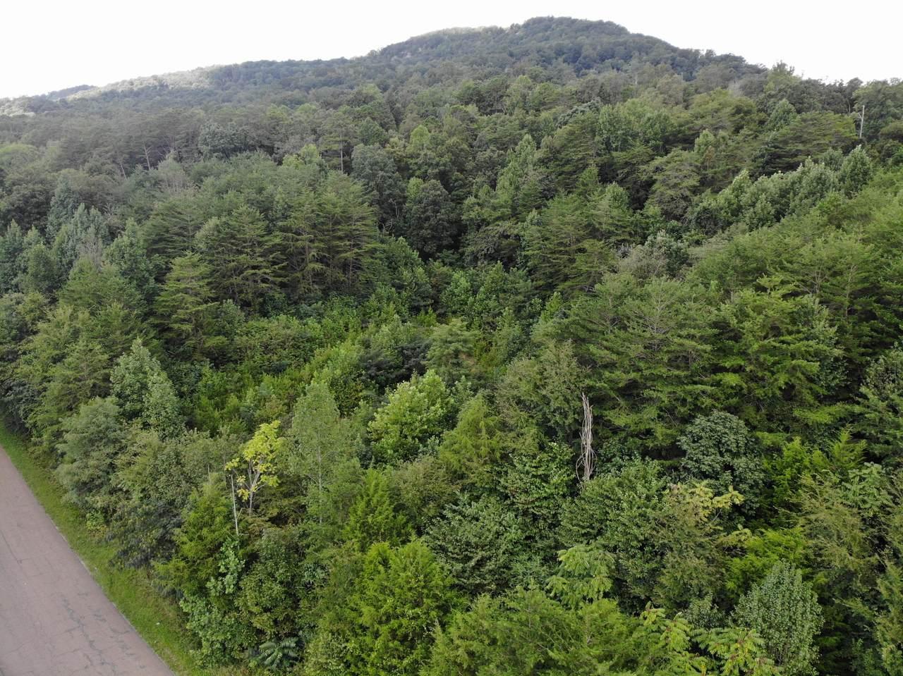 000 Fredonia Mountain Rd - Photo 1