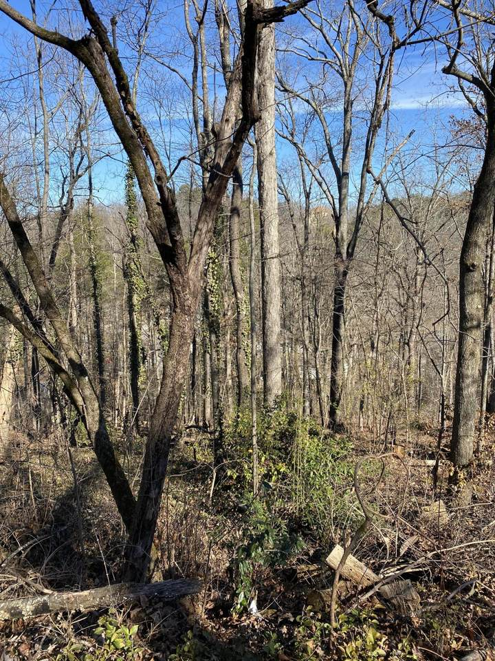 0 Oak Knoll Dr - Photo 1