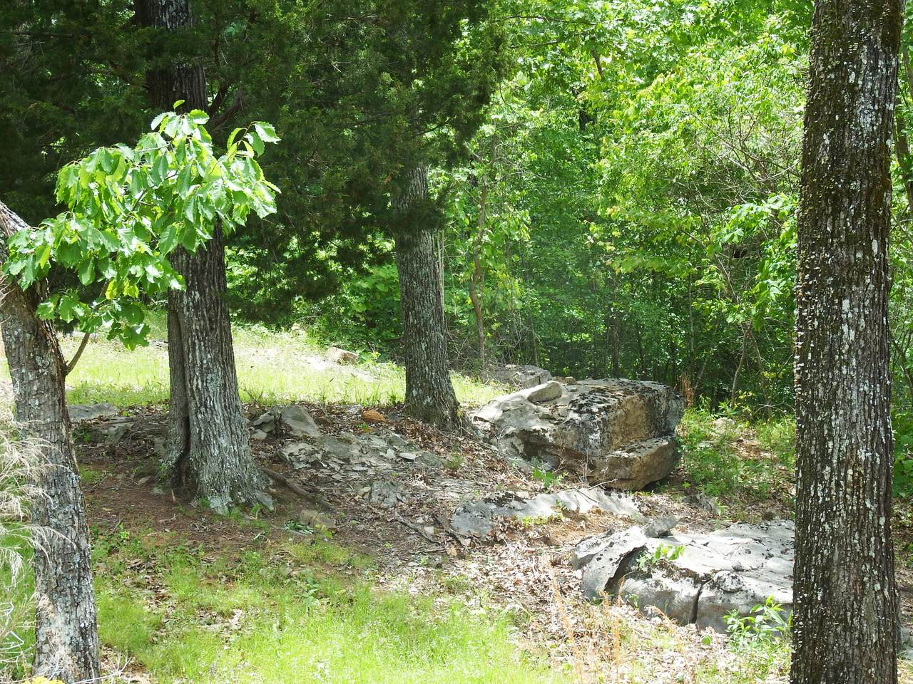 37 Bluffs Rd S - Photo 1