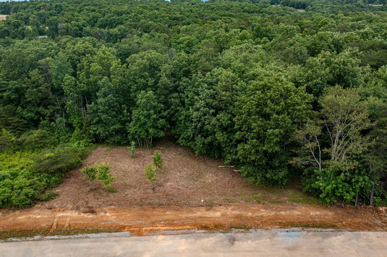 Lot 220 Gray Rock Vw - Photo 1