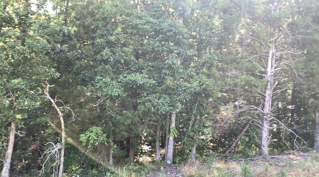 9933 Runyan Hills Ln - Photo 1