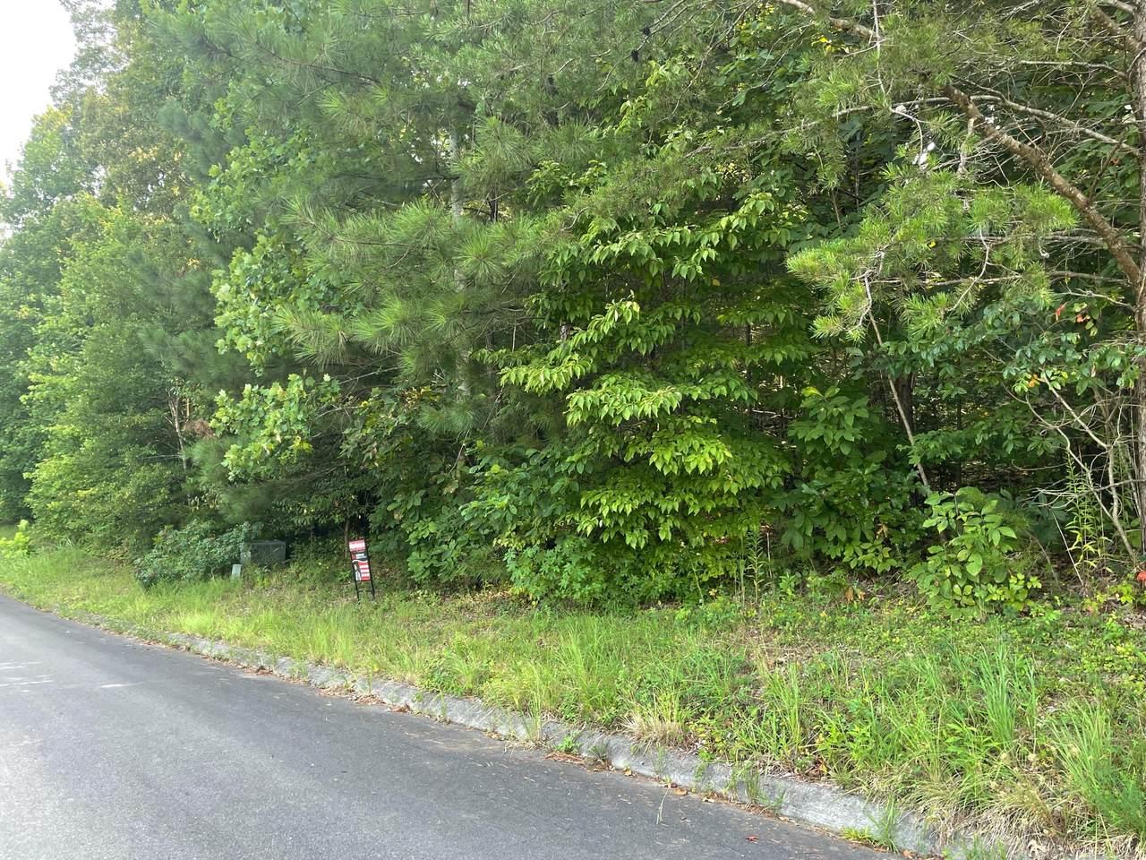 Lot 5 Percheron Northwest Dr - Photo 1