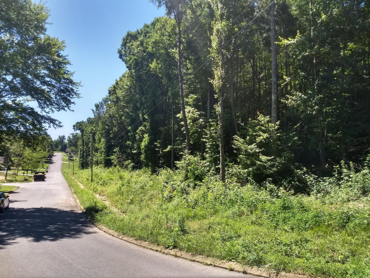 0 Hickory Ridge Tr - Photo 1