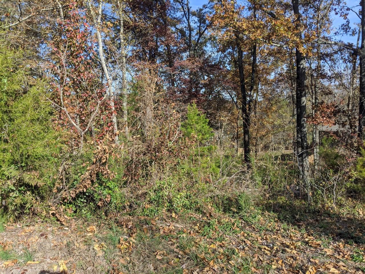 392 Arbor Pointe Tr - Photo 1