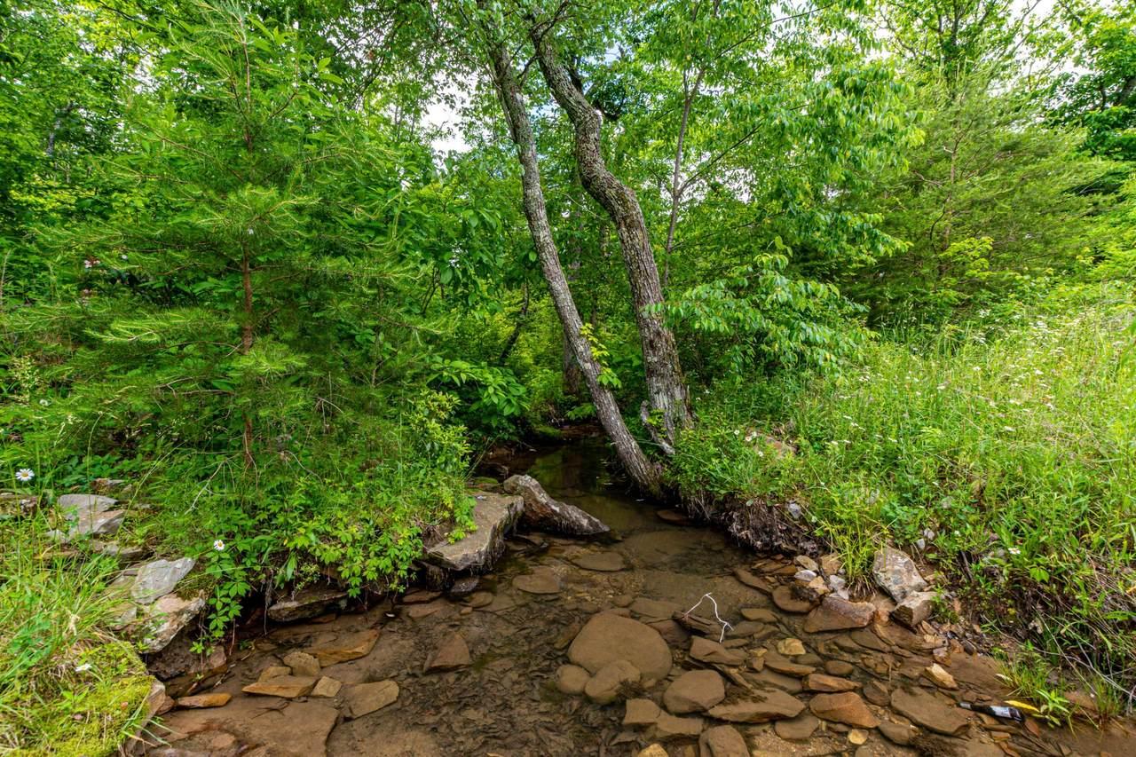 Lot 184 Gray Rock Vw - Photo 1