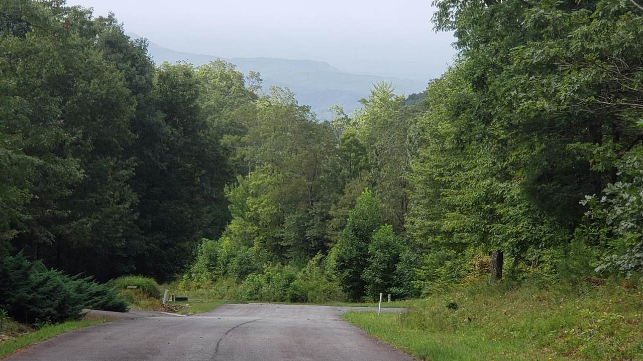 Highway 52, Lot 11 - Photo 1