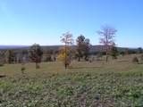 100 Raven Crest Trail Tr - Photo 19