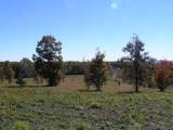 100 Raven Crest Trail Tr - Photo 20