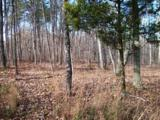 Lot 207 Harlee Vista Dr - Photo 9