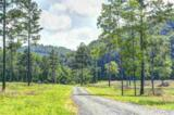 14.94ac River Rd - Photo 7