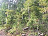 908 Hidden Ledge Tr - Photo 2