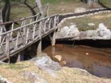 1656 Raulston Falls Rd - Photo 12