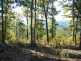 53 Acres Highlander Rd - Photo 10