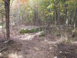 96 Acres Myers Loop Rd - Photo 20