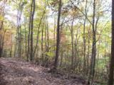 96 Acres Myers Loop Rd - Photo 21
