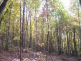 96 Acres Myers Loop Rd - Photo 25