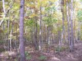96 Acres Myers Loop Rd - Photo 39