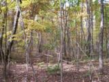 96 Acres Myers Loop Rd - Photo 40