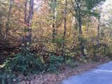 2458 Lower Cove Loop - Photo 4