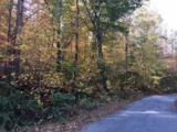 2458 Lower Cove Loop - Photo 5
