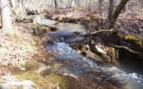 0 Raulston Falls Rd - Photo 3