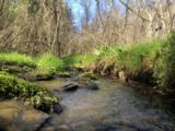 388 Greasy Creek Rd - Photo 3