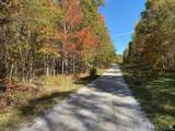 27.1 Bluff Ridge Road - Photo 6