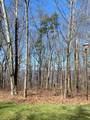 Lot 14 Maggie Bluff - Photo 3