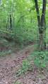 23.87 Acre Rhea County Hwy - Photo 4
