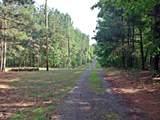 0 County Road 265 - Photo 10