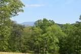 29 Acres Horns Creek Rd - Photo 11