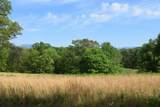 29 Acres Horns Creek Rd - Photo 12