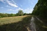 29 Acres Horns Creek Rd - Photo 16