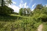 29 Acres Horns Creek Rd - Photo 2