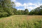 29 Acres Horns Creek Rd - Photo 3