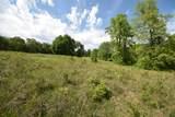 29 Acres Horns Creek Rd - Photo 6
