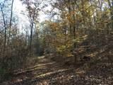 10650 Pine Hill Rd - Photo 43