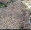 23 Big Springs Gap Rd - Photo 10