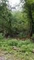 10.13 Acre Stump Hollow Rd - Photo 1