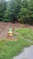 10.13 Acre Stump Hollow Rd - Photo 11